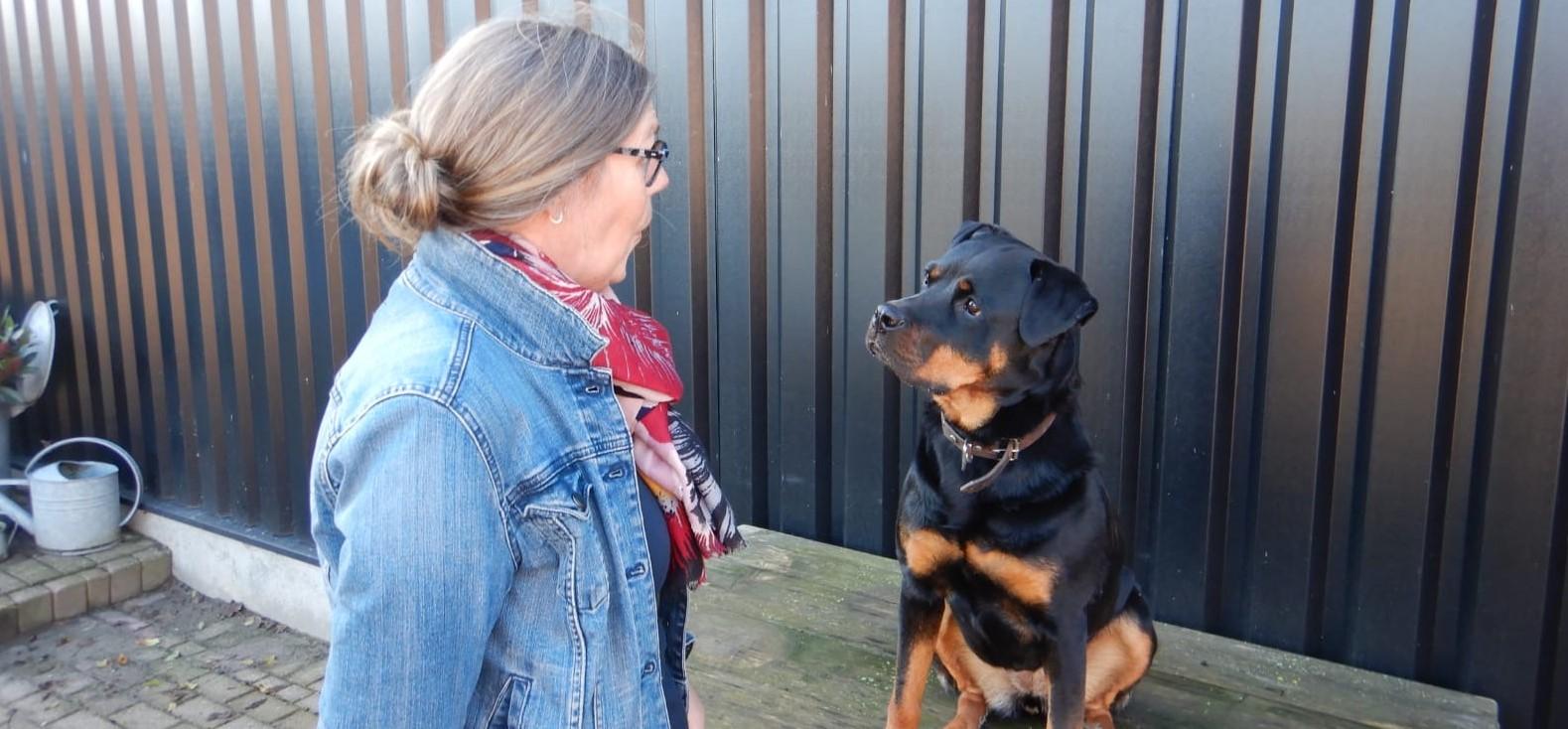 Basiscursus hondenschool Frauke Kneepkens Schouwen-Duiveland